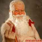 avatar: Christmas: Santa Claus Middle Finger