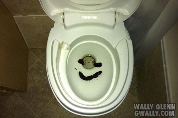 gwally: pranks: Smiling Turd in Toilet